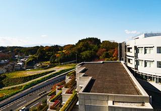 7階からの眺望(晩秋)