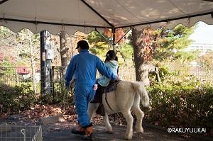 移動動物園ポニー乗馬
